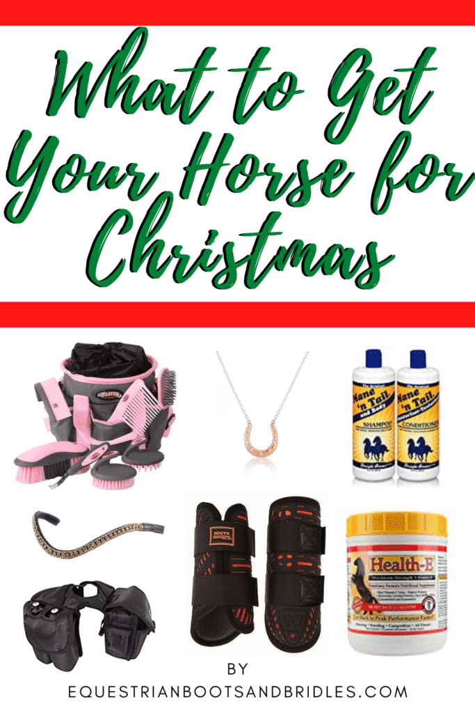 What to Get Your Horse for Christmas 11