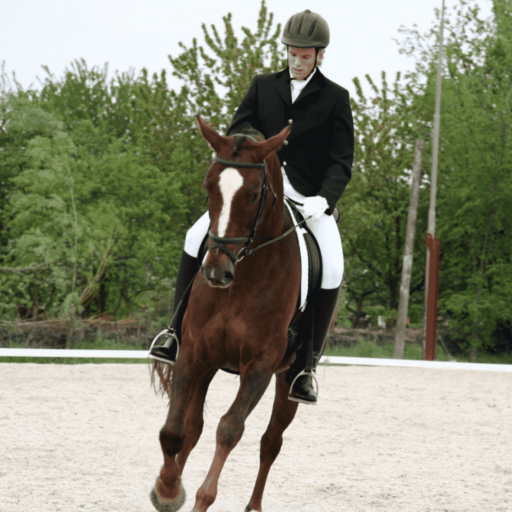 5 Benefits of Horseback Riding That You Should Know 3