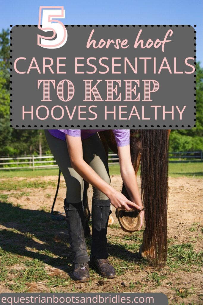 Healthy Hooves Care - 5 Tips to help maintain your horses health