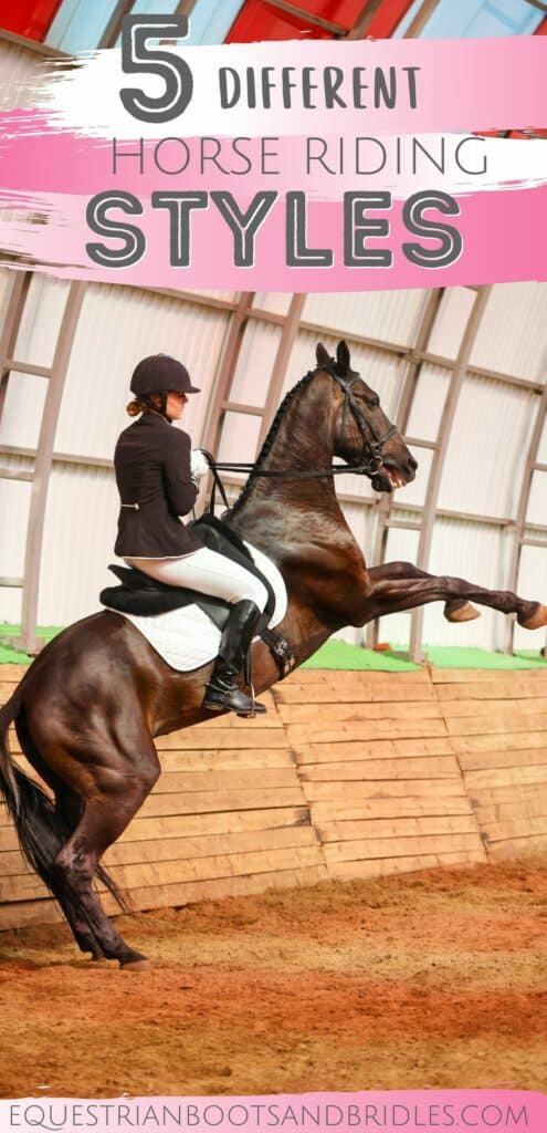 Horse Riding Styles: 5 Different Types 18
