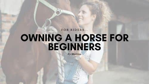Owning a Horse for beginners