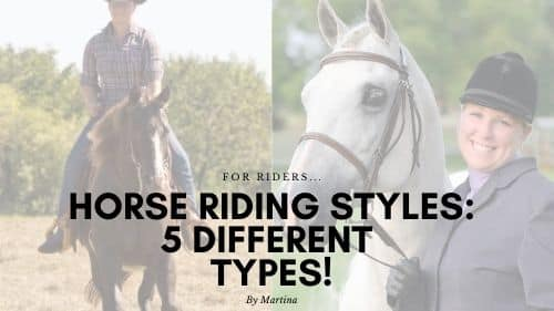 Horse Riding Styles: 5 Different Types 5