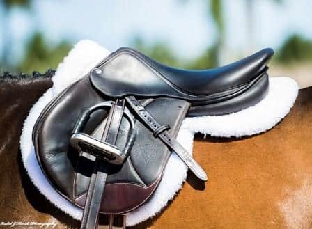Honest Review of ThinLine Trifecta Cotton Half Pad with Sheepskin Rolls - 3 Key Factors 8