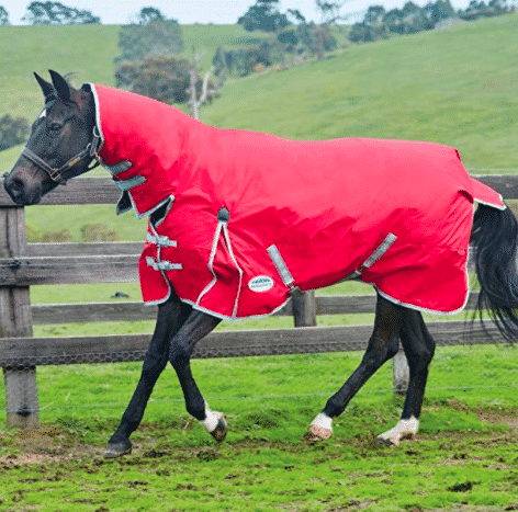 High Neck Horse Blanket For Wet Climate Locations.