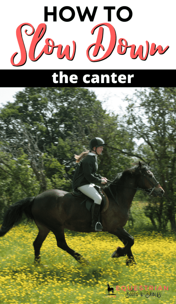 How to slow down the canter by improving your horse's strength and balance