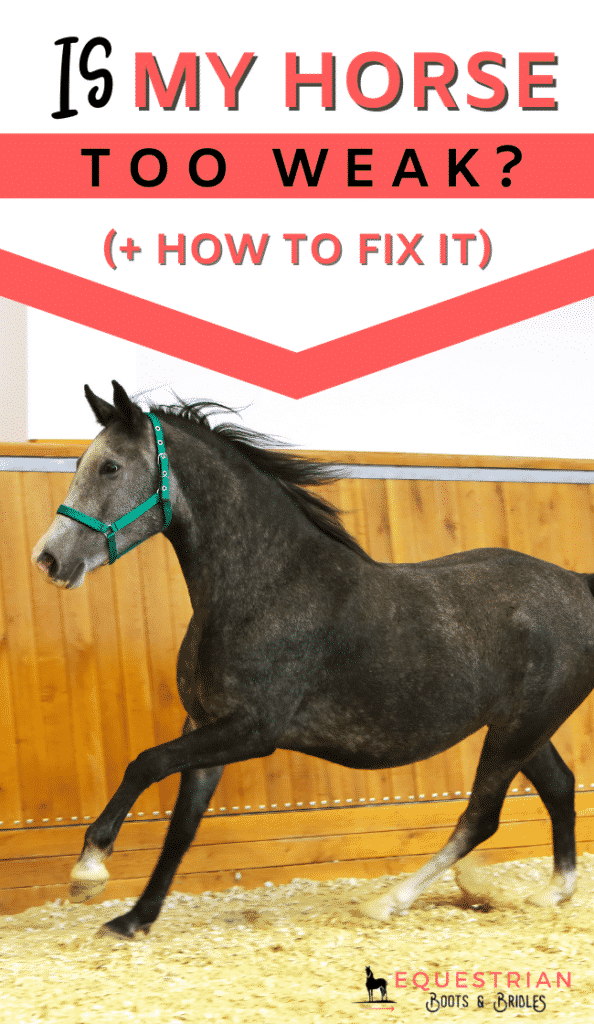 Is my horse too weak and how to slow down a horse's canter