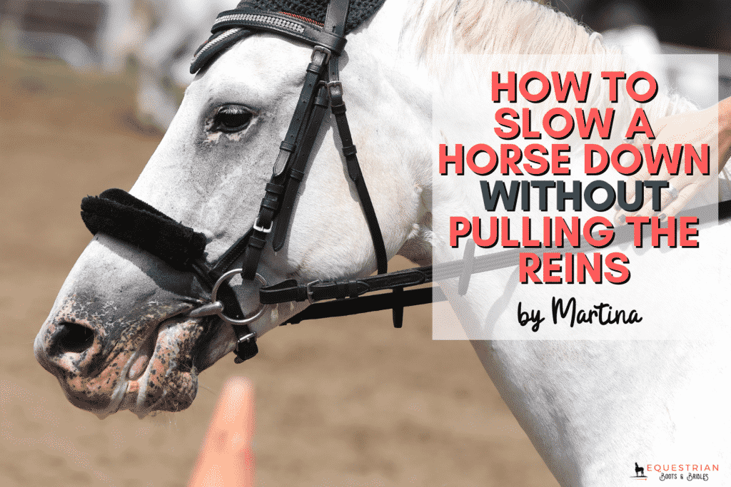 How to Slow A Horse Down Without Pulling The Reins