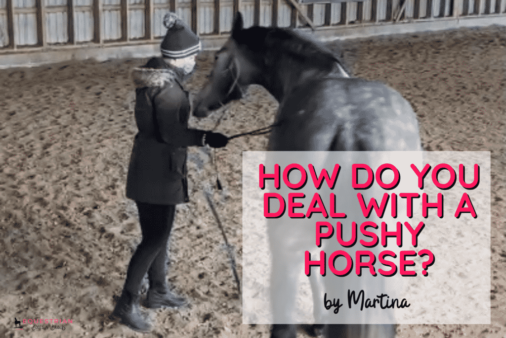How Do You Deal With A Pushy Horse?