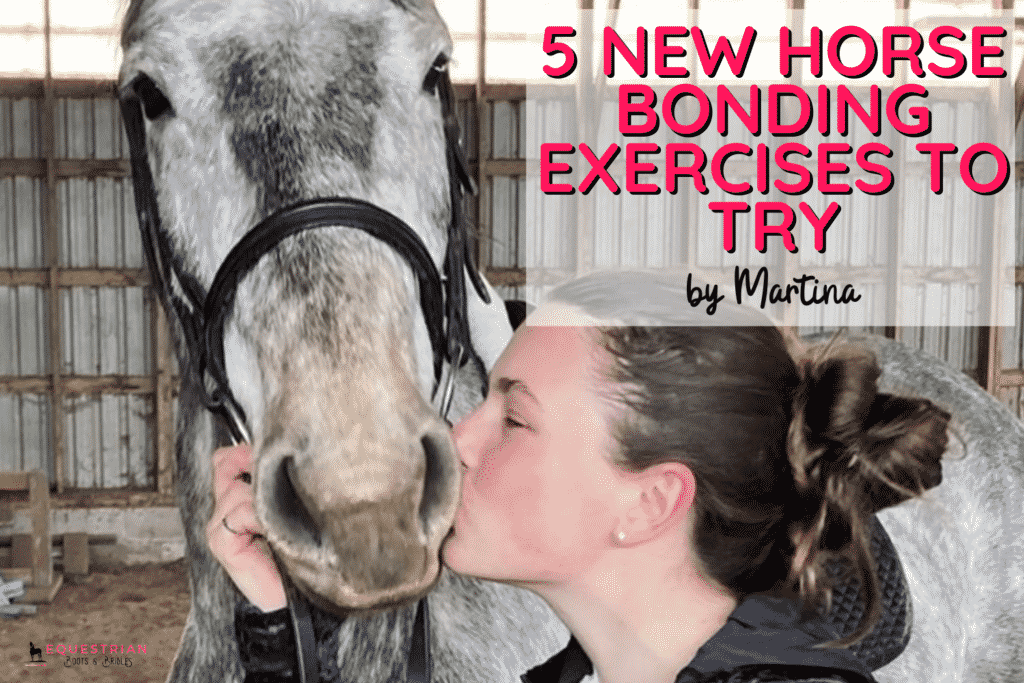 5 Essential Horse Bonding Exercises [Relax First, Perform Better!]