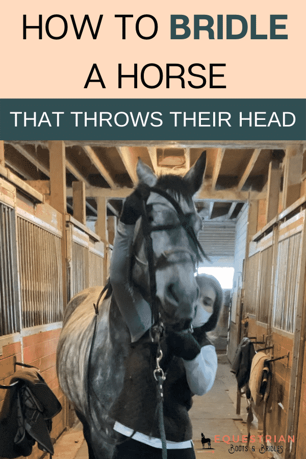 How do you put a bridle on a horse that throws his head