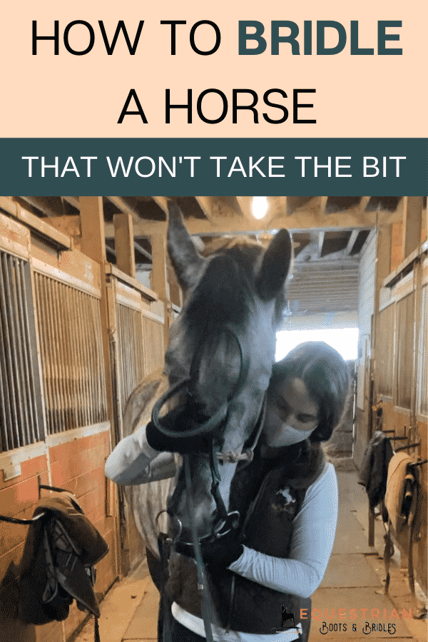 Why won't my horse take the bit?